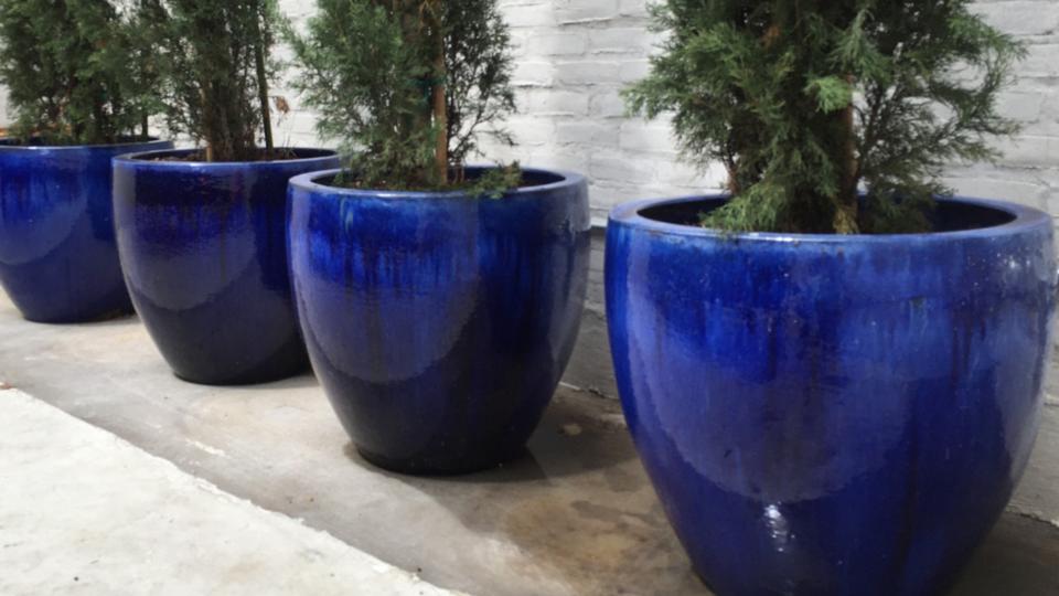 Shaya 4 Blue Pots